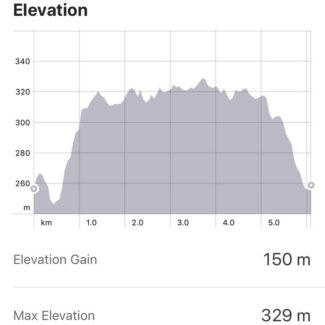 A nice little hill climb to start off  5-Peaks Ontario Kelso Trail Run. At the top of the Niagara Escarpment gives yous some great scenic views.
